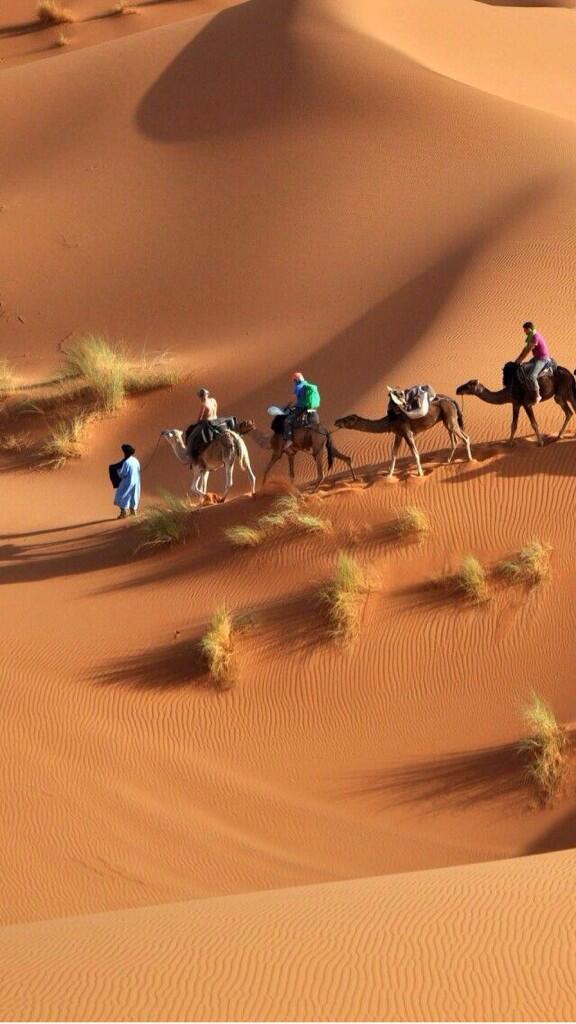 Beauté du désert