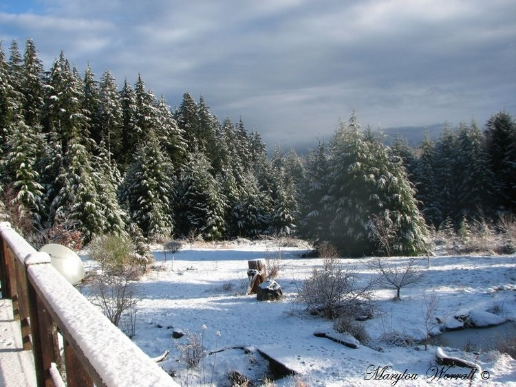 Nouvelles du Canada 135 : Il a neigé