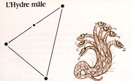 XVIII - Armure de l'Hydre Mâle (Hydrus Cloth)