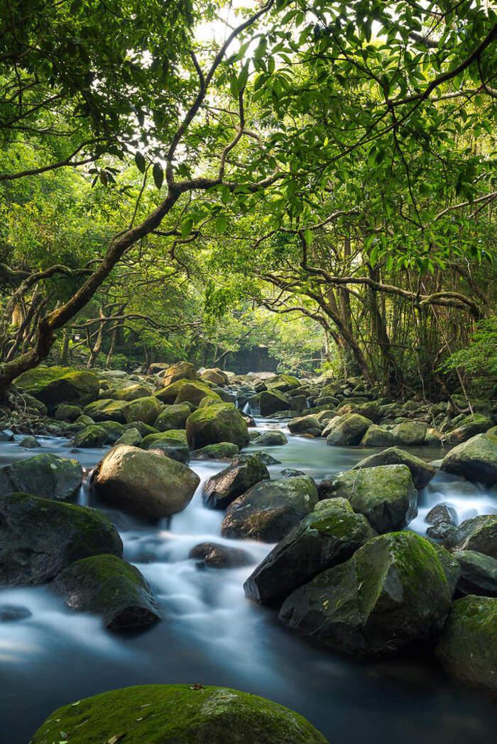 La beauté est partout dans la nature