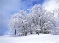 En cas de neige