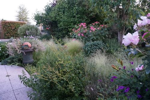 Une soirée dans le jardin du Chat Vert