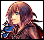 Chroniques de Kingdom Hearts - Top 14 de l'Organisation XIII