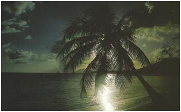 La traversée vers les Antilles 2