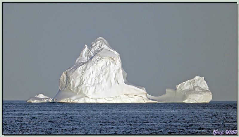 Au large de Coburg Island, nous croisons quelques icebergs - Mer de Baffin - Nunavut - Canada