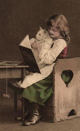 01 - Des chats et des enfants