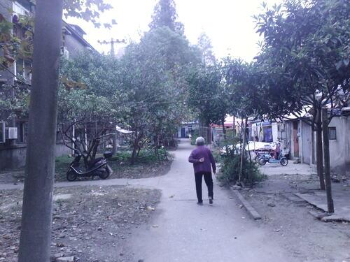 Les Parcs en Chine