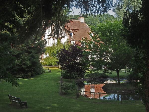 F comme Forêt de Tronçais  (1)