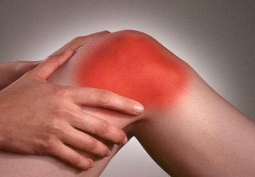 4 plantes idéales pour combattre les symptômes de l'arthrite