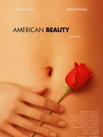 American Beauty affiche
