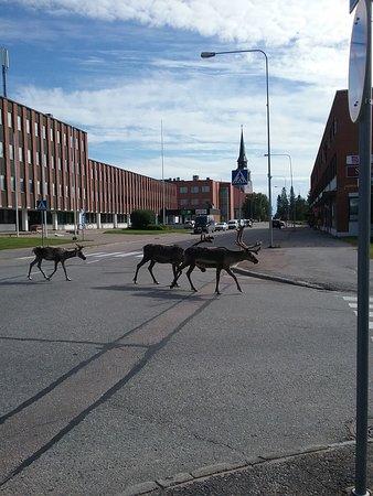NOEL A ROVANIEMI (1998) Finlande