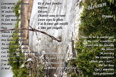 Blog de dyane :Traces de Vie, Blessure