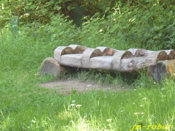 Prom'nons-nous dans les bois, pendant que le loup y est pas ....
