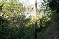 1er voyage : Langon - Bazas - Bassin d'Arcachon