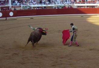 """Francis Cabrel """"La corrida"""""""