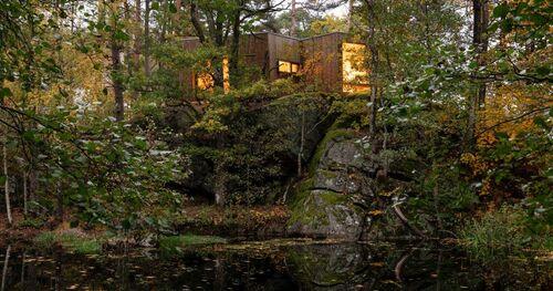 Hôpital en forêt