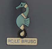 Pin's RC le Brusc (46)