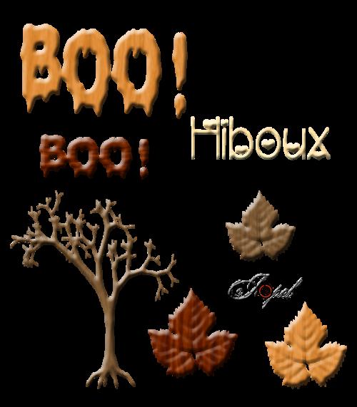 Kits Bois Hiboux et maison a faire BOOOOOOO