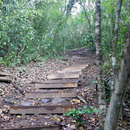 Et le chemin continue... - Photo : Elise