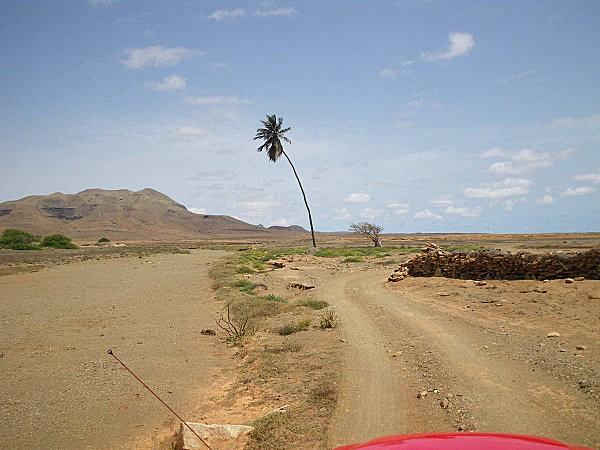 boa vista, l'est de l'île16