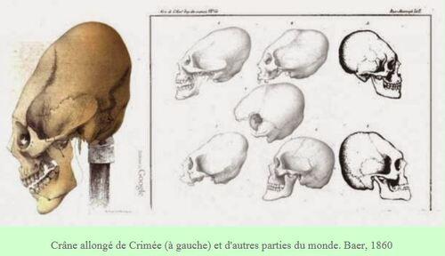 Un crâne étrange découvert