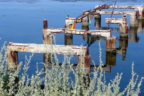 Barcarès : des reflets dans l'eau de l'étang
