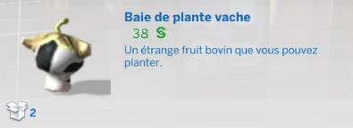 "Carrière ""Jardinier"""