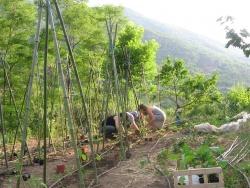 Un jardin et une histoire