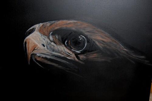 L'aigle2
