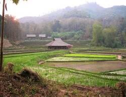 A la découverte du Laos