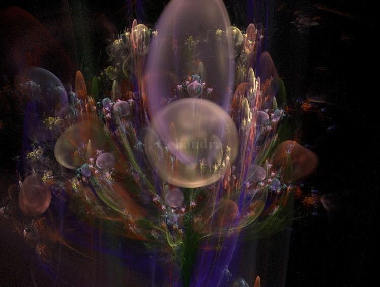 L'Imaginaire  :Les Rêves....