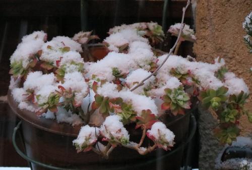 Il neige en Provence !