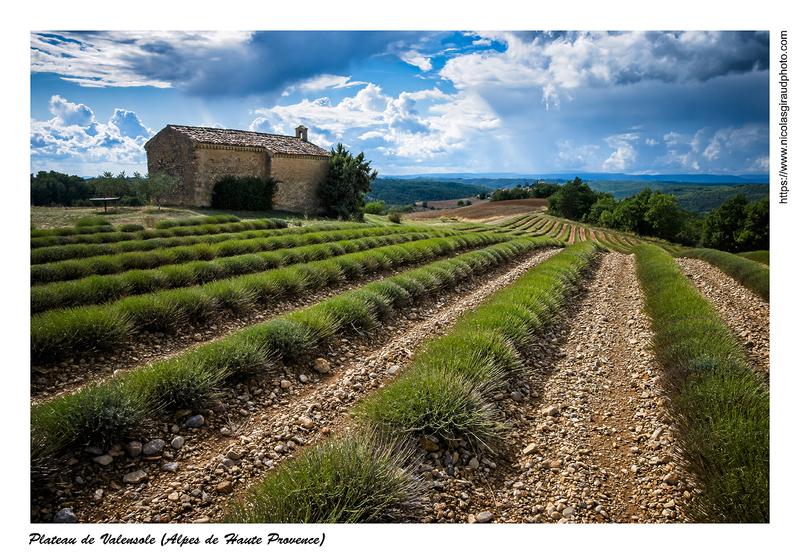 Au coeur du plateau de Valensole entre villages et lavandes (PACA)