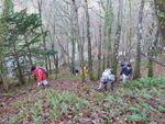 La randonnée du 18 décembre à Fontaine-Etoupefour