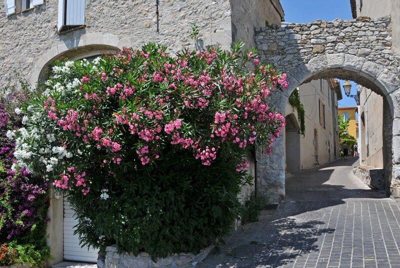 Balade au Castellet