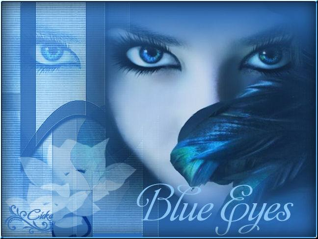 Blue Eyes-Brechtje