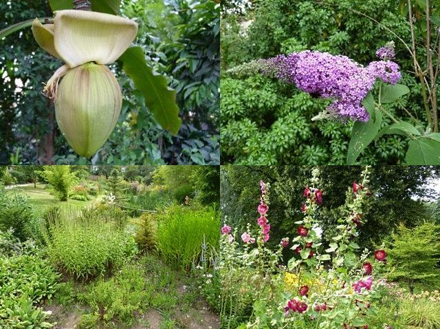 Botanique de Metz 17 - 16 07 10