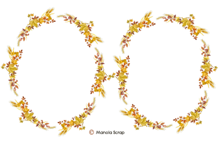 Cadres fleurs page 5