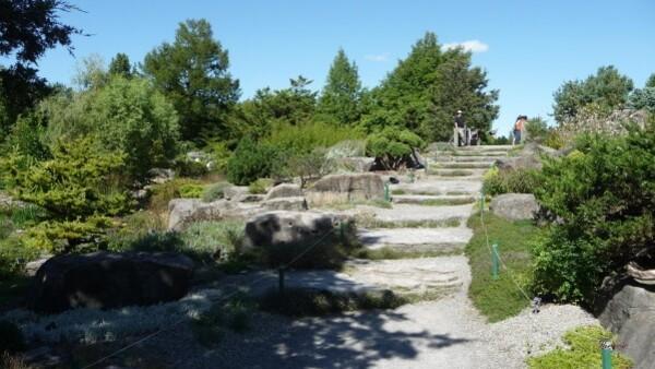 Jardin botanique (72)