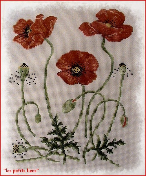 broderie-coquelicot-terminee.jpg