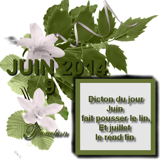 ╠♥╣ DICTON DE JUIN