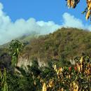 Une vue superbe sur les falaises et les flancs de la Pelée (2)