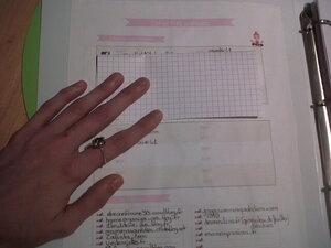 """Mon ancien classeur blog (beaucoup trop petit maintenant)/ Collée sur le verso de mon classeur, la fiche pratique """"du blog de Vivi"""" récapitule tous mes mots de passe, mes sites favoris ainsi que mes mémos sur mon blog"""