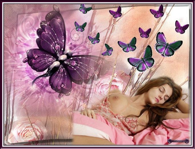 Caresses de papillons