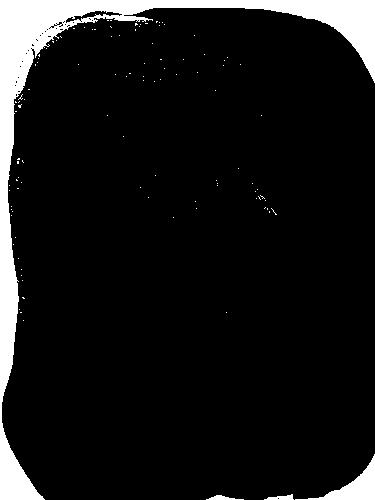 tube asiatique