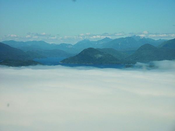 Jour 26 Tofino Survol brouillard