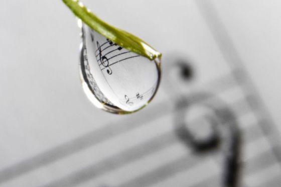 La musique révèle ses émotions, sa passion 8