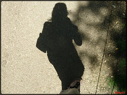 1-ombre--1-.jpg