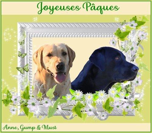 JOYEUSE PAQUES