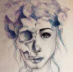 Images -Crânes.